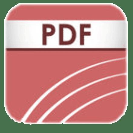 Formati File PDF Portable Document Format | Stampare PDF con Ricoh